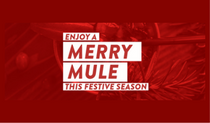My Merry Mule Websit