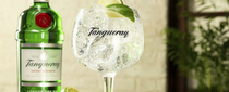 EXPLORING THE GROWING WORLD OF GIN