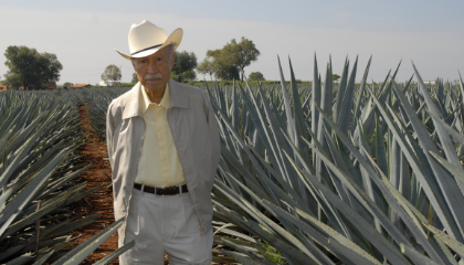FOLLOWING THE STORY OF DON JULIO