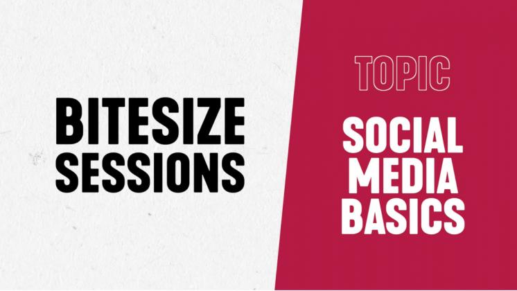 BITESIZE SESSIONS: SOCIAL MEDIA BASICS