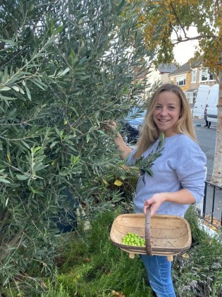 Rebecca Seal picking olives outside