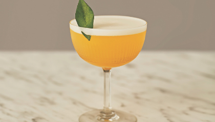 Drinkspiration whisky sour cocktail